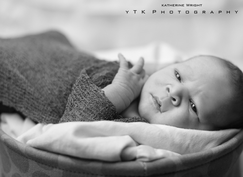 YTK_Photo_Albany_New_Born_002