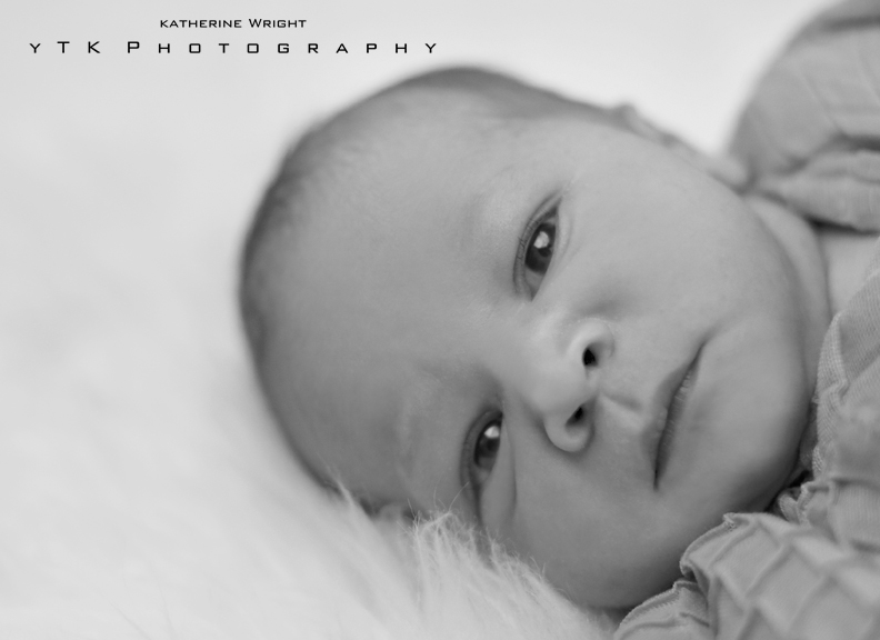 YTK_Photo_Albany_New_Born_004