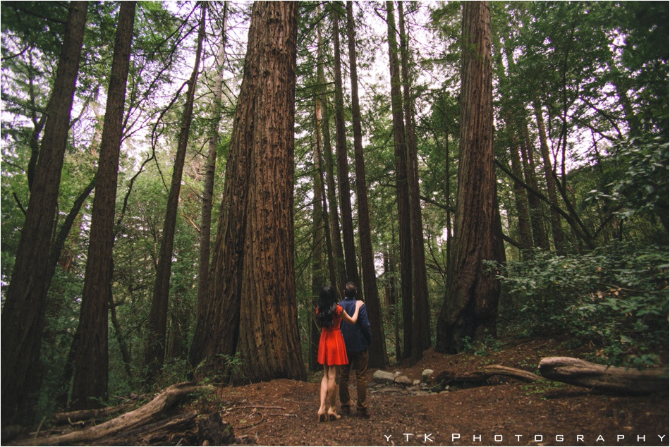 Muir_Woods_Engagment_photos__0005